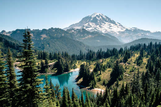 Plan some incredible hikes on the various Washington Mountains like Mt. Rainier during your Washington Tour.
