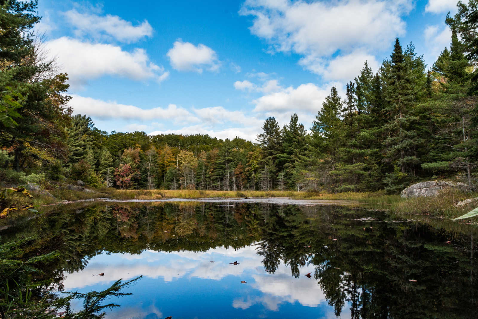 Enjoy a hike in Algonquin Provincial Park during your Ontario Vacation.