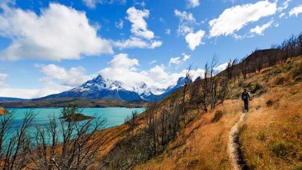 Ein Wanderer im Torres del Paine Nationalpark Chile