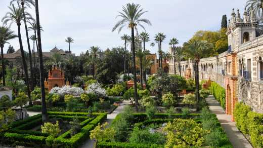 Discover Seville's beautiful Alcazar Palace on a Game of Thrones Spain tour