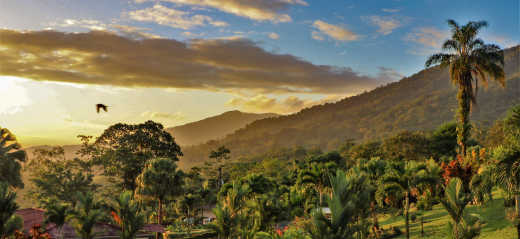Discover beautiful volcanoes and jungles on a Costa Rica tour