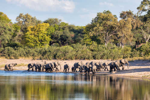 Bwabwata Nationalpark in Namibia - ein Highlight bei einer Namibia Safari