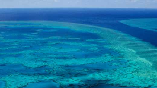 Embark on a Great Barrier Reef tour to discover the beauty of Australia.
