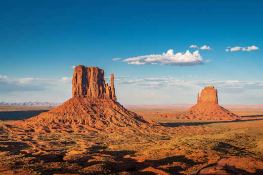 Experience unique desert scenery on an Arizona round trip