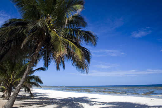Discover beautiful beaches on a Zanzibar vacation