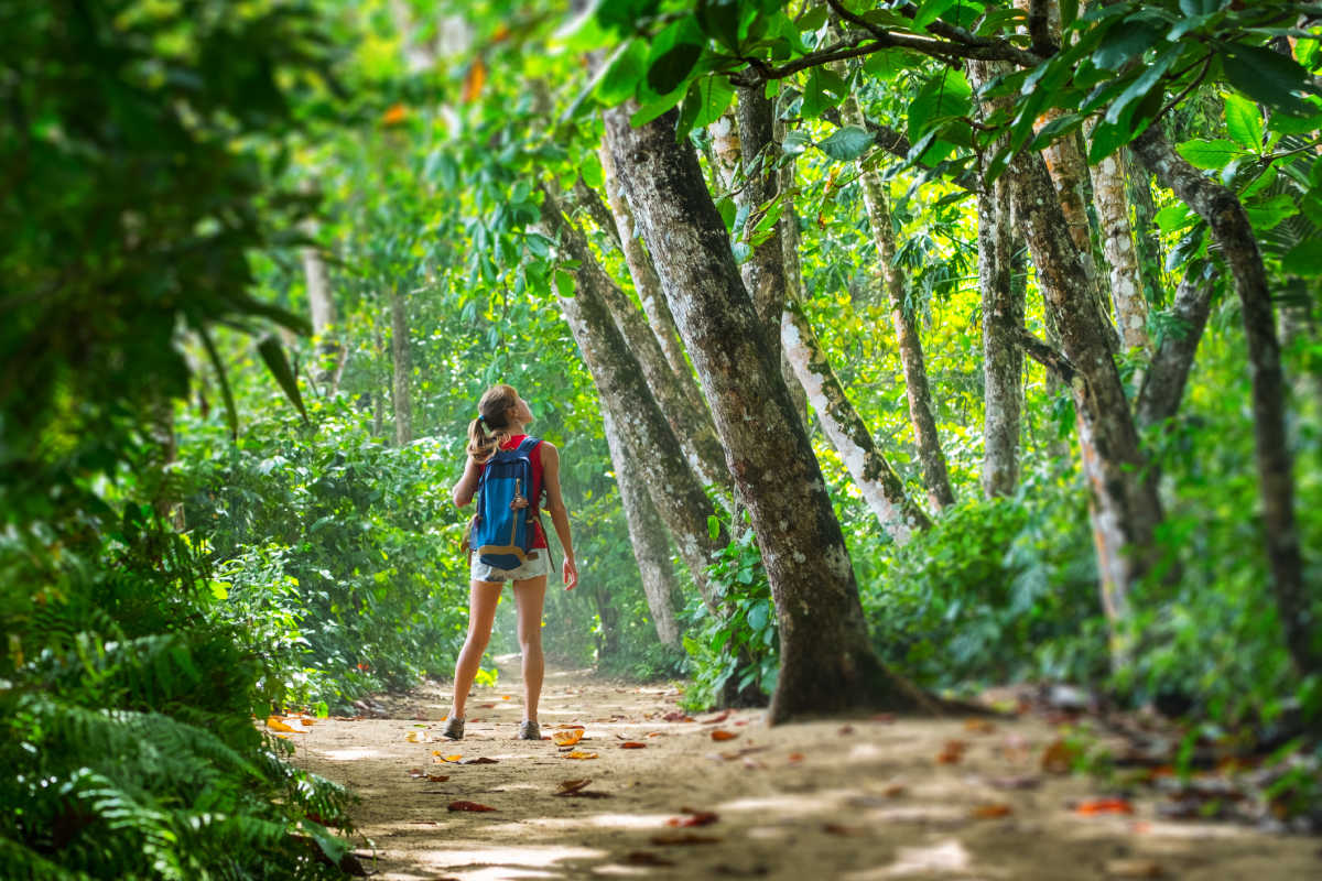 A woman walking in a Costa Rican jungle