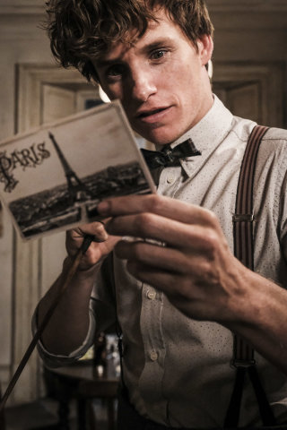 Newt Scamander reading a postcard from Paris