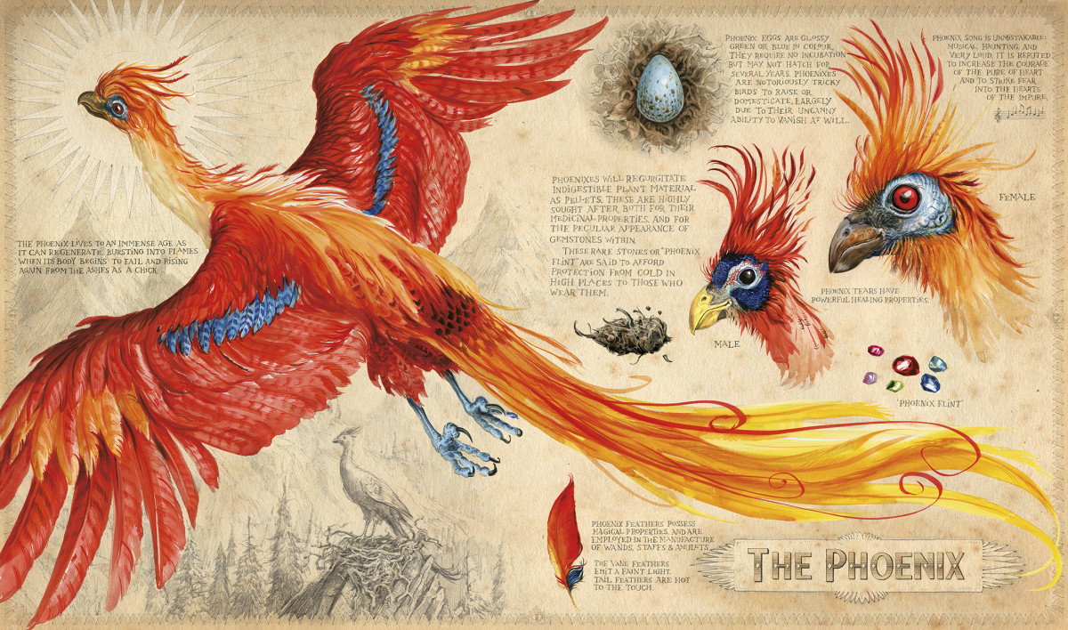 Image result for illustrated harry potter book 2