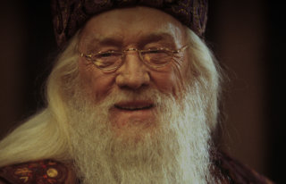 The throwaway Dumbledore remarks that got us thinking  Pottermore