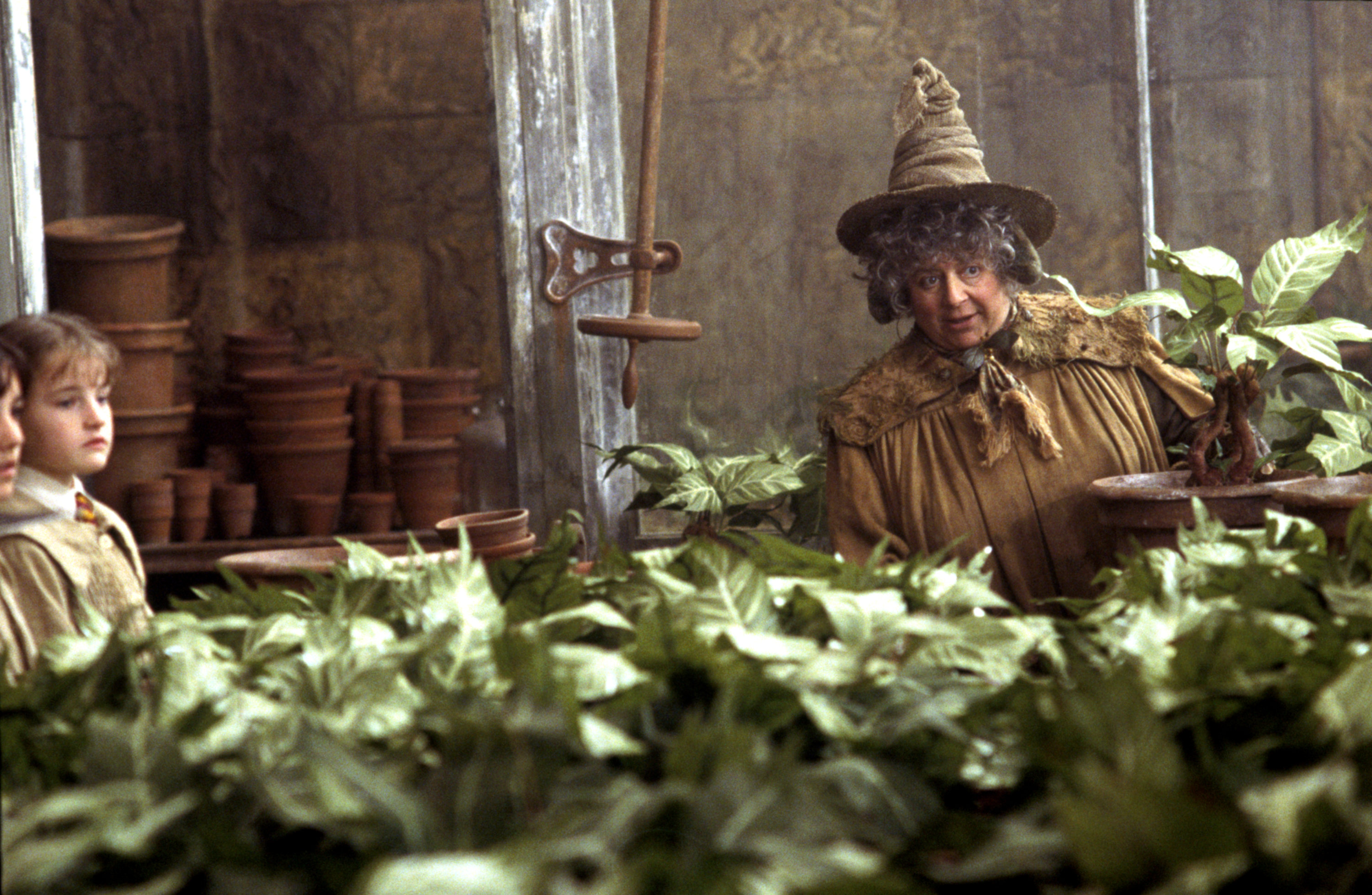 Pomona Sprout in her greenhouse from the Chamber of Secrets