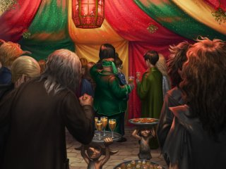 Slughorn's Christmas party