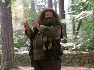 Harry teaching a lesson on the Forbidden Forest from the Prisoner of Azakaban
