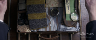 Newt's case and Hufflepuff scarf