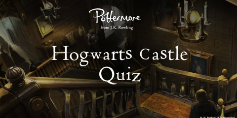 Features - Pottermore