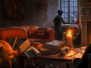 Harry gets a letter delivered to Gryffindor Common room