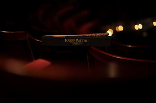 Harry Potter Cursed Child wand 2