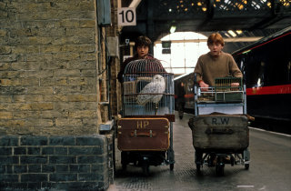 Harry and Ron with their trolleys on the station platform at King's Cross