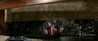 Niffler holding purse alt shot Fantastic Beasts teaser trailer pic 22