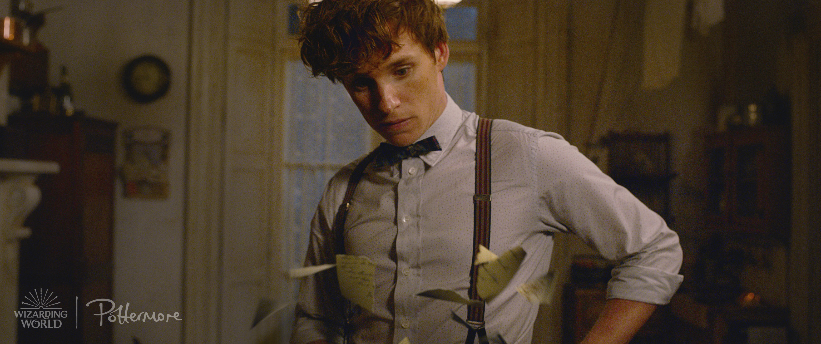 Newt Scamander from the Fantastic Beasts: Crimes of Grindelwald trailer