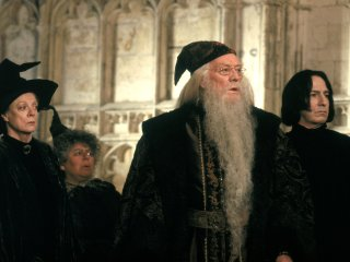 Dumbledore Sprout Sanpe and McGonagall in the corridor
