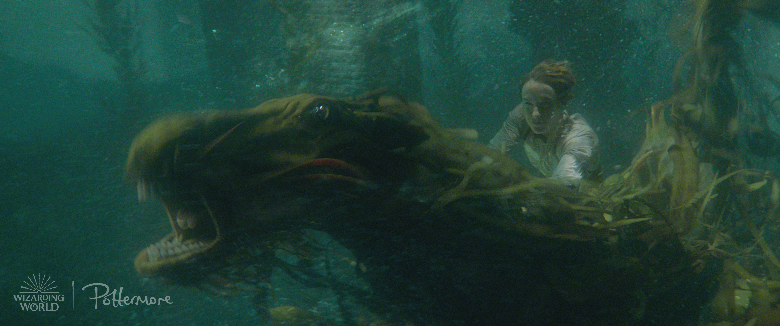 Newt underwater from the Fantastic Beasts: Crimes of Grindelwald trailer