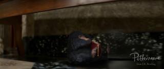 Niffler purse Fantastic Beasts teaser trailer pic 17