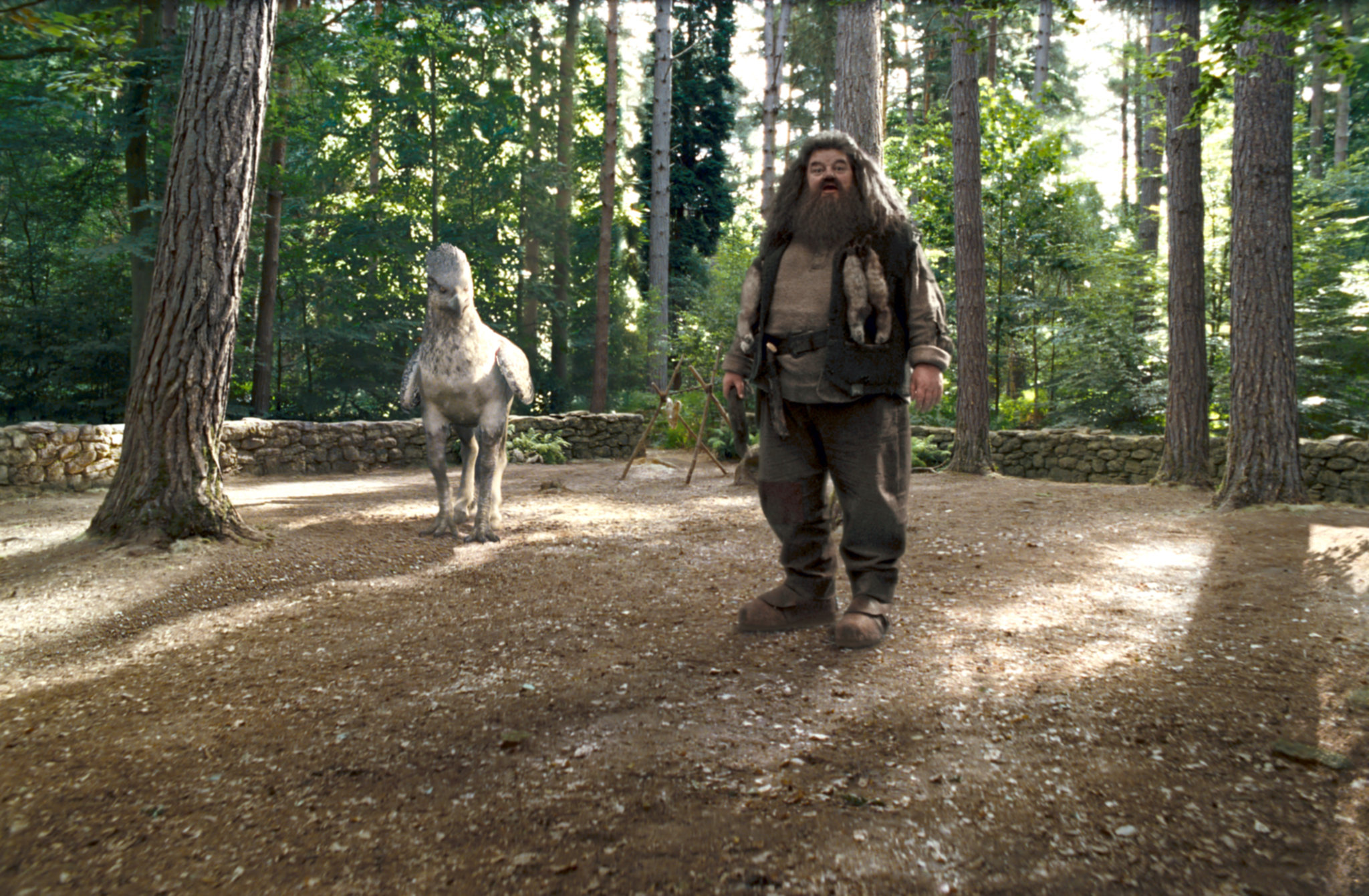 Hagrid introduces his Care of Magical Creatures class to Buckbeak