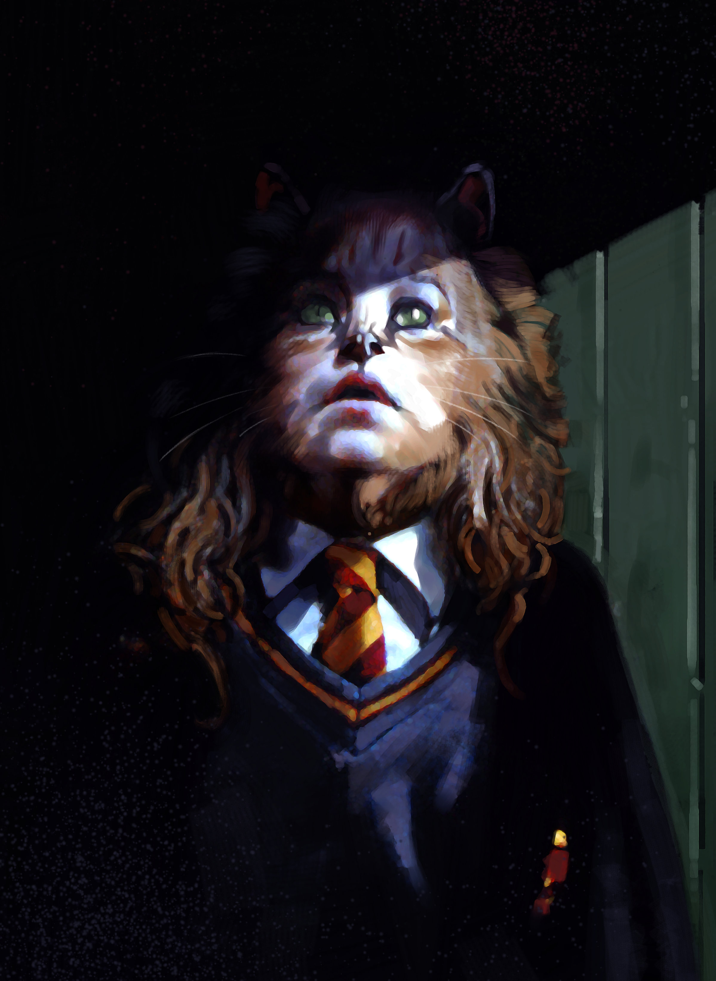 An illustration of Hermione after taking Polyjuice Potion of a cat