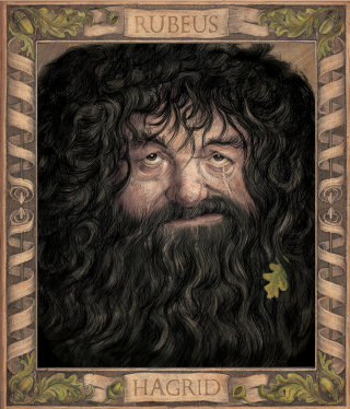 Chamber of Secrets illustrated edition Hagrid Jim Kay