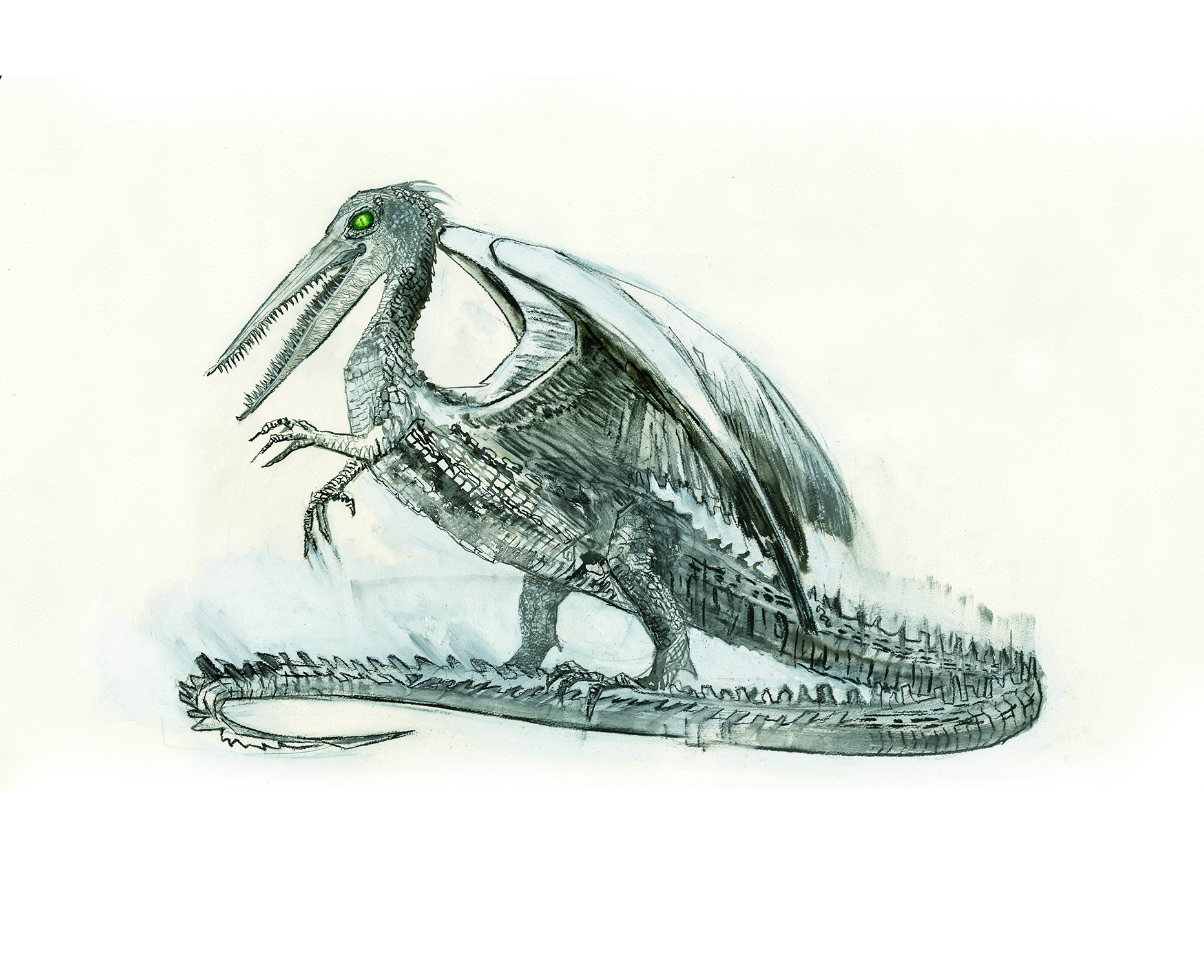 Illustration Of A Snallygaster From The New Edition Fantastic Beasts And Where To Find Them