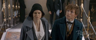 Newt Tina MACUSA stairs Fantastic Beasts teaser trailer pic 9