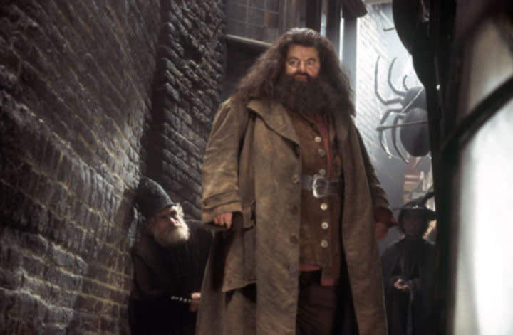 10 things you might not know about Hagrid - Pottermore
