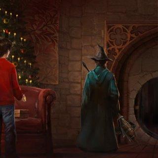 Professor McGonagall - Pottermore