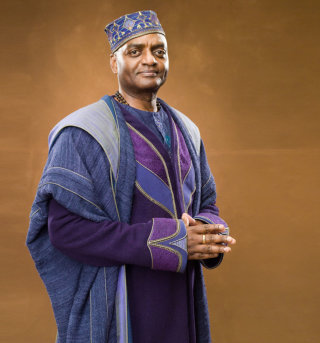 Kingsley Shacklebolt in some colourful robes from the Order of the Pheonix