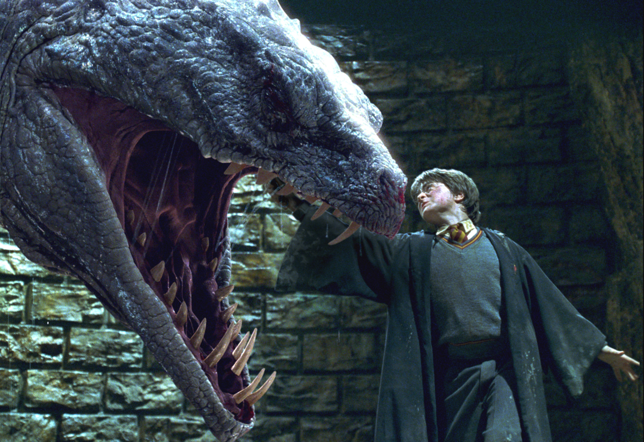 Risultati immagini per harry potter and the basilisk