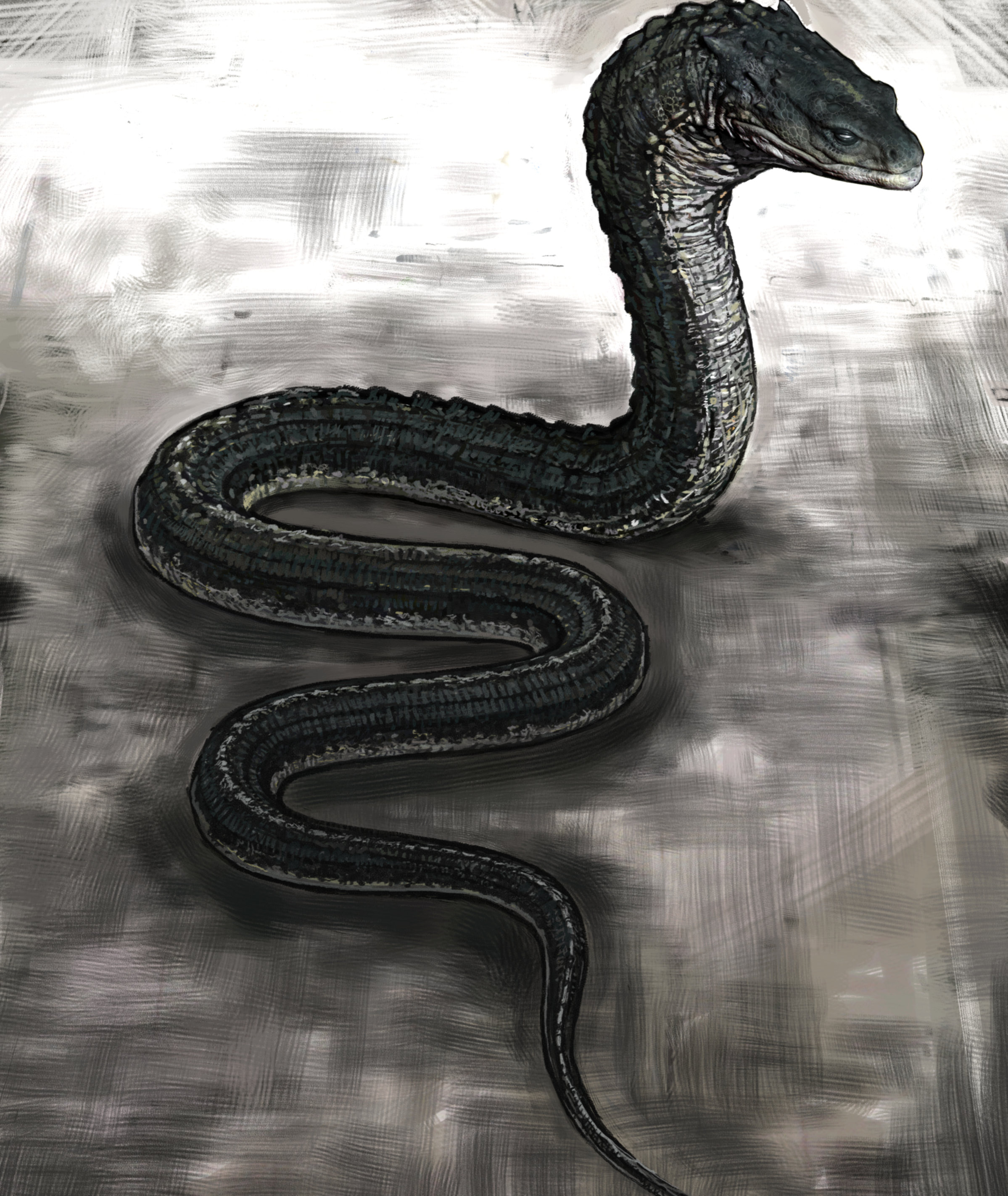 A drawing of the giant snake creature called the Basilisk.