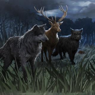 Pottermore - Sirius Black