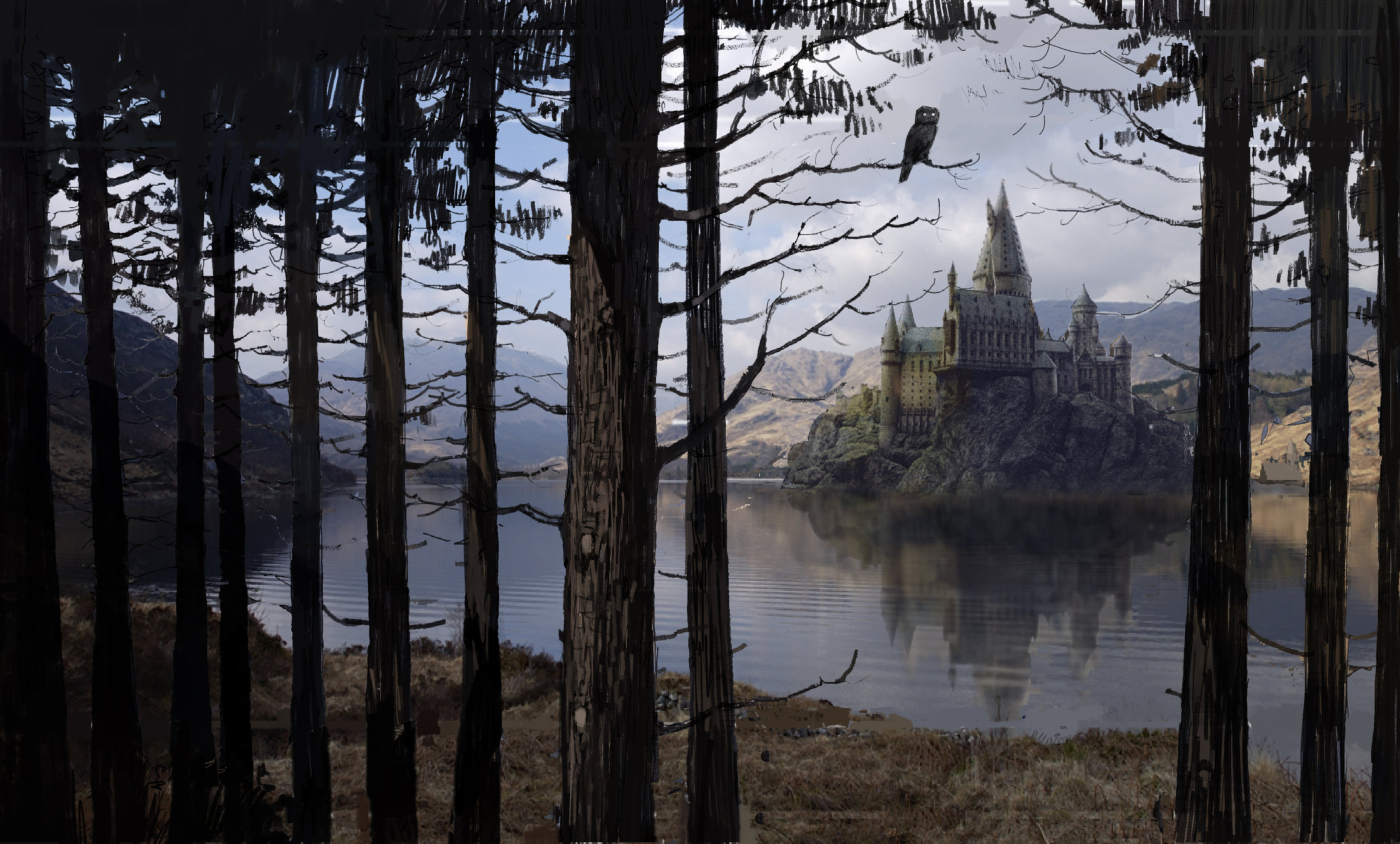 Hogwarts through some trees