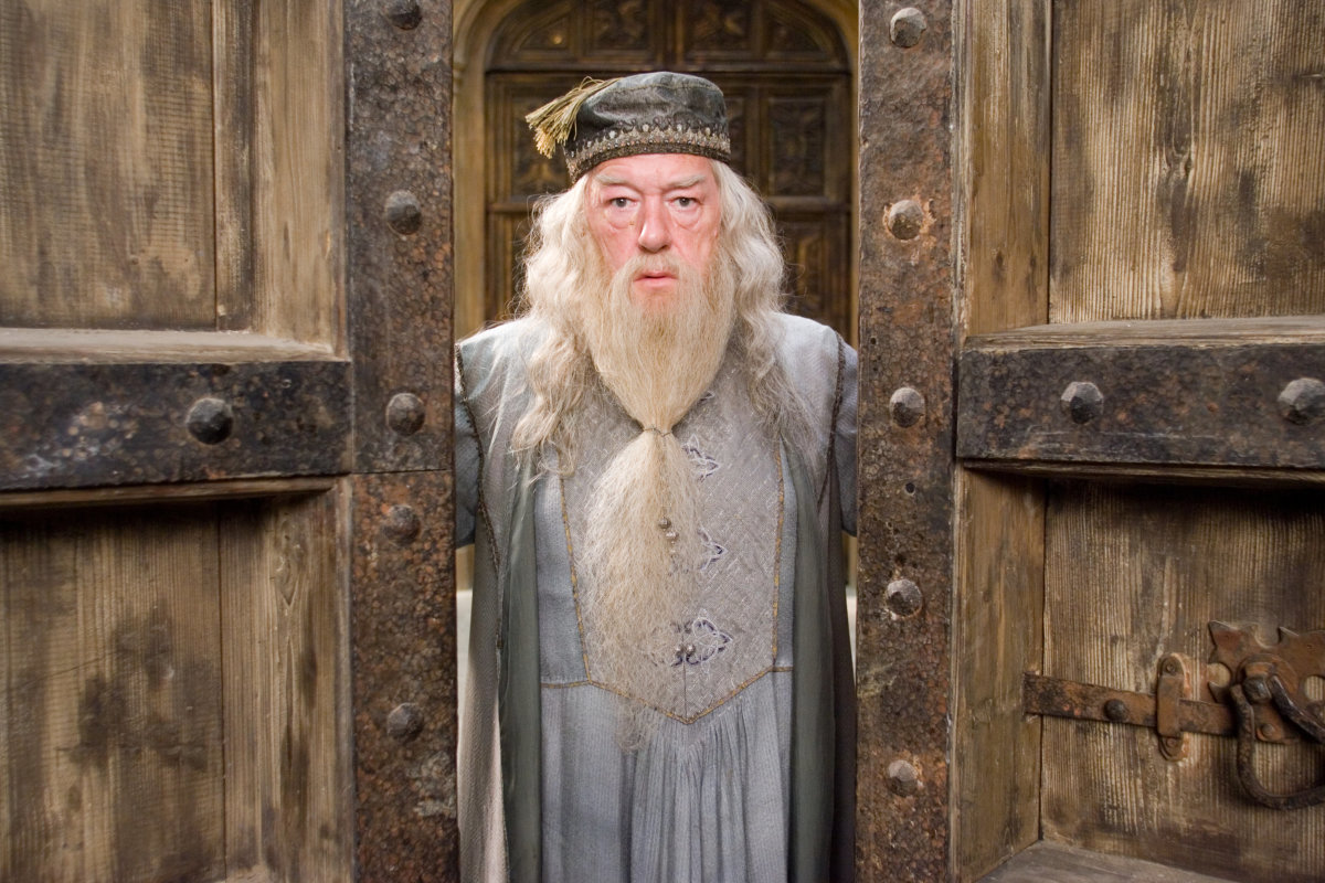 The chapter that made us fall in love with albus for Dumbledore wand made of