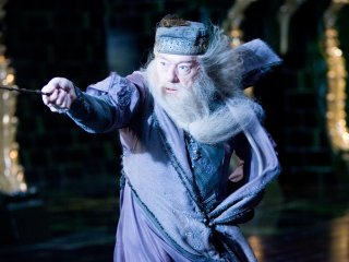 What s in a wand tree symbolism and wandlore in harry for Dumbledore wooden wand