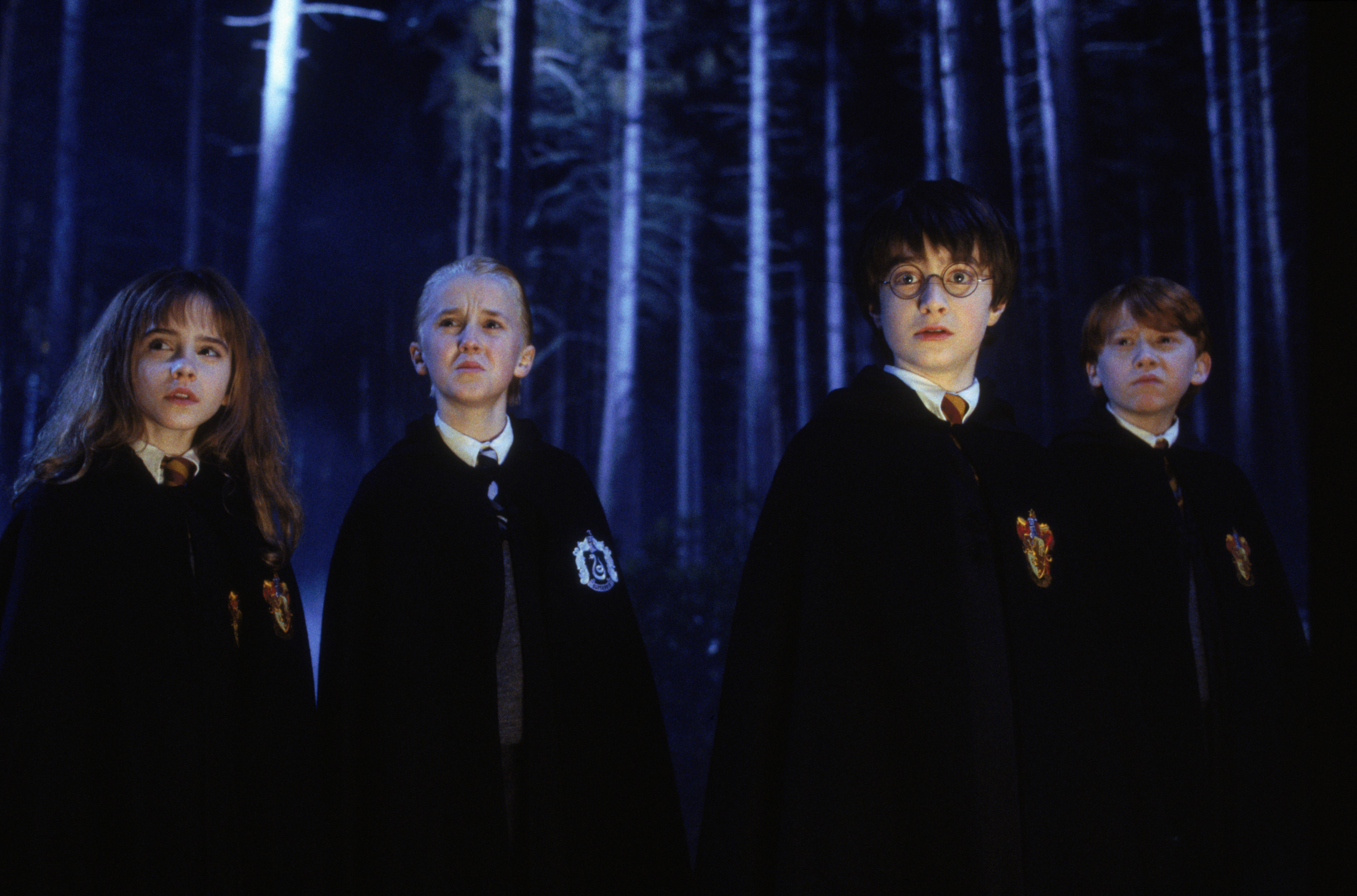 What the Forbidden Forest reveals about Harry Potter