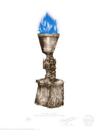 The Goblet of Fire, featured in Harry Potter and the Goblet of Fire