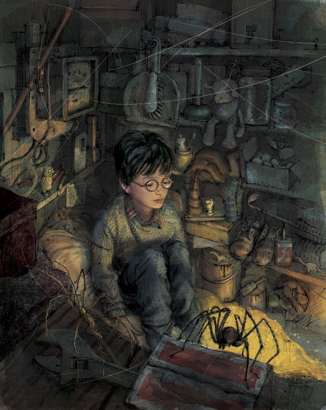 Harry Potter by Jim Kay