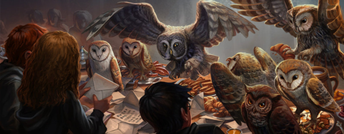 owls pottermore