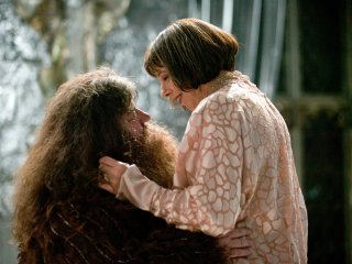why we wish we d seen more of hagrid and madame maxime pottermore
