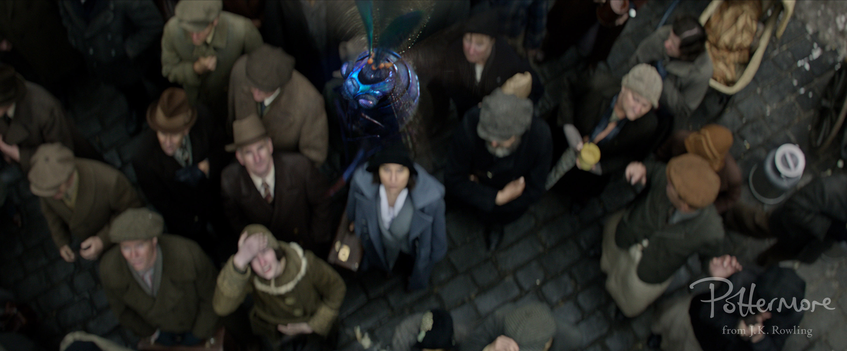 Billywig in Fantastic Beasts and Where to Find Them