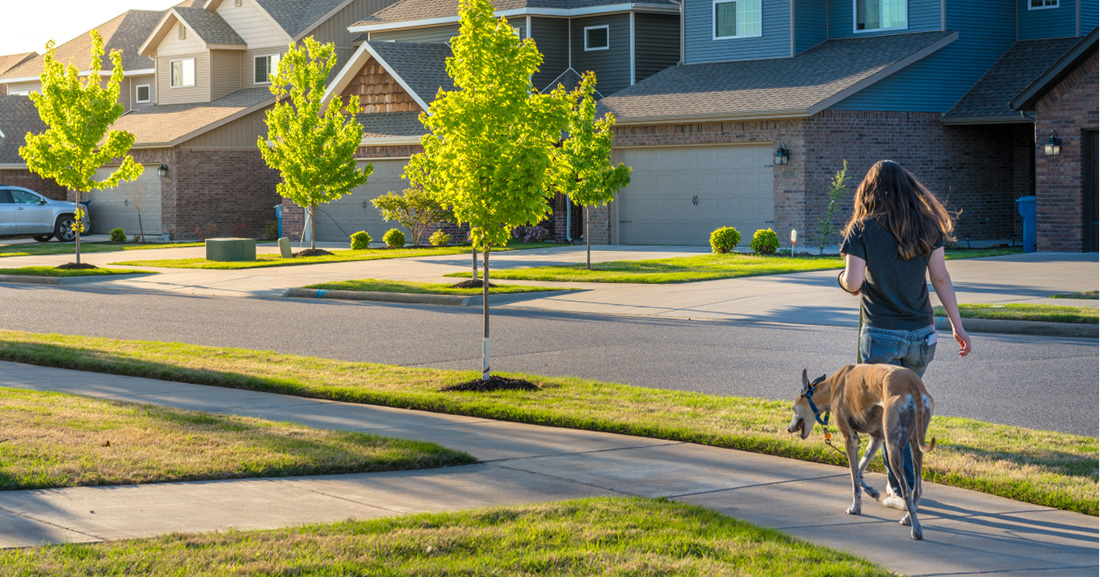 Woman walks dog through neighborhood on nice day