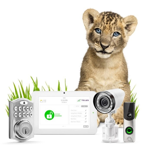 Smarthome Security image