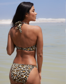 Buenos Aires Bikini Top in Leopard Print by Bravissimo