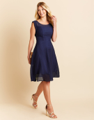 Gabby Sheer Stripe Dress in Navy by Bravissimo Clothing